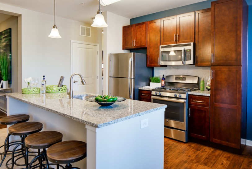 Detailed finishes include vinyl wood-plank flooring throughout the kitchen area.