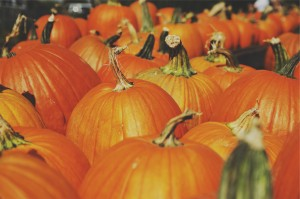 Halloween Events for Everyone in Harford County, MD